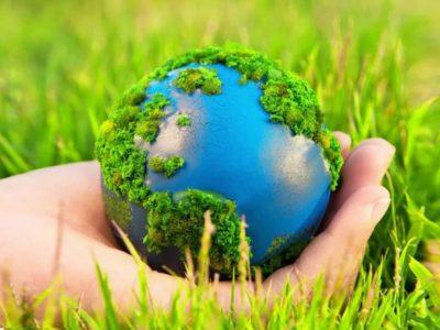 Профессия эколог
